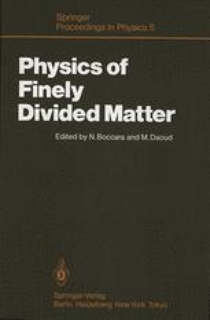 Physics of Finely Divided Matter