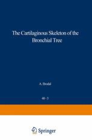 The Cartilaginous Skeleton of the Bronchial Tree