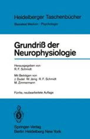 Grundriß der Neurophysiologie