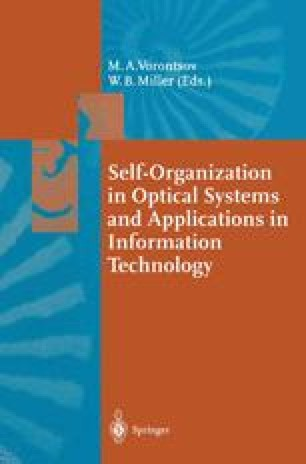 Self-Organization in Optical Systems and Applications in Information Technology