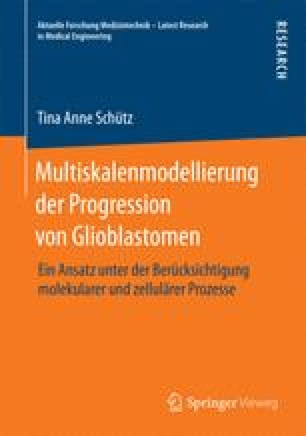 Multiskalenmodellierung der Progression von Glioblastomen