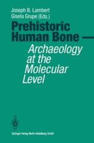 Prehistoric Human Bone