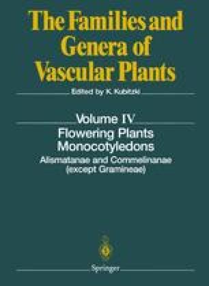 Flowering Plants · Monocotyledons