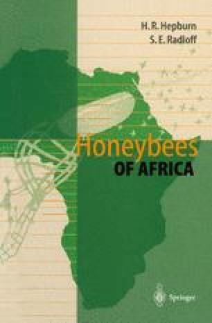 Honeybees of Africa
