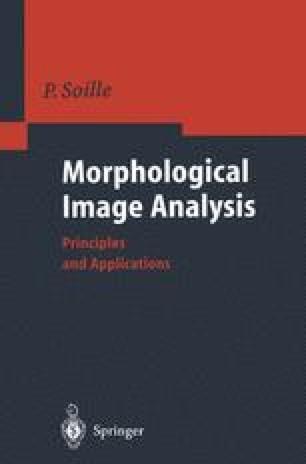 Morphological Image Analysis