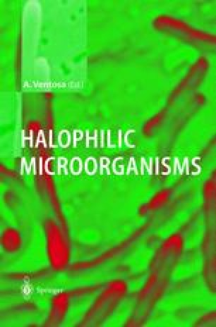 Halophilic Microorganisms