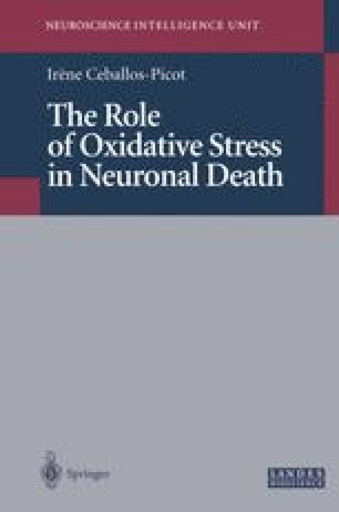 The Role of Oxidative Stress in Neuronal Death
