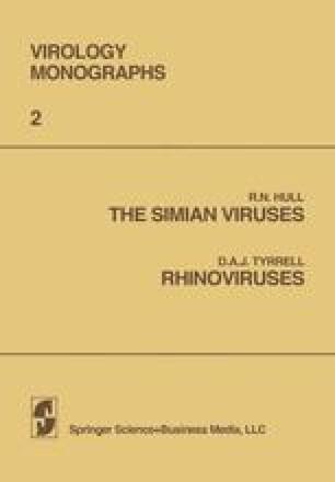 The Simian Viruses / Rhinoviruses