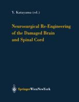 Neurosurgical Re-Engineering of the Damaged Brain and Spinal Cord