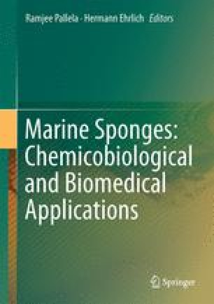 Chronicles of Sponge Biomaterials: The Saga in Biomedicine