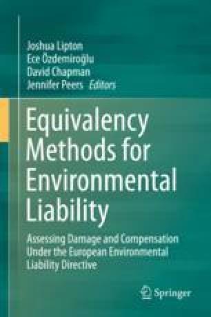 Equivalency Methods for Environmental Liability