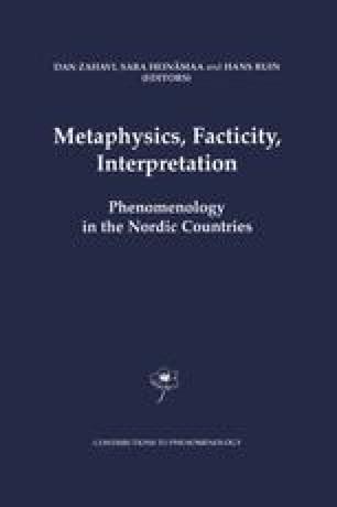 Phenomenology And Metaphysics Springerlink