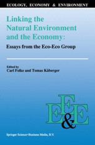 Design Essay Topics Linking The Natural Environment And The Economy Essays From The Ecoeco  Group How To Write A Good Reflective Essay also Examples Of Illustration Essays Multinational Firms And Pollution In Developing Countries  Springerlink Multicultural Essay