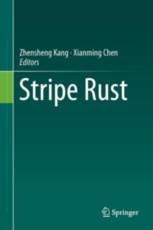 Stripe rust resistance springerlink fandeluxe Gallery