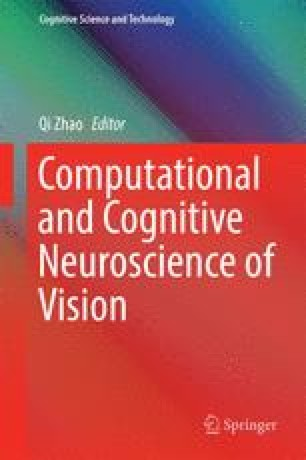 Computational and Cognitive Neuroscience of Vision