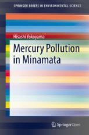 Past, Present, and Future of Mercury Pollution Issues
