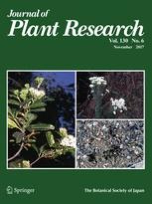 2017 Awards in the Journal of Plant Research | SpringerLink