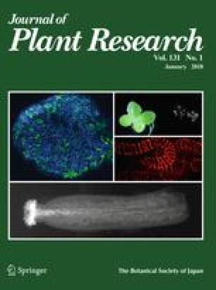 Journal of Plant Research - Springer
