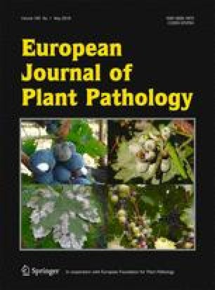 Interactive physiological potential of Peyronellaea curtisii