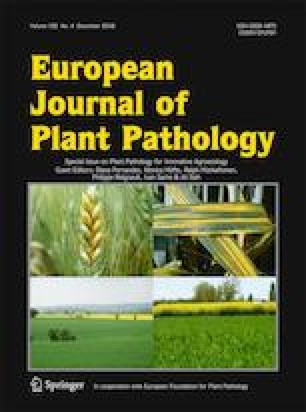 The impact of high throughput sequencing on plant health diagnostics