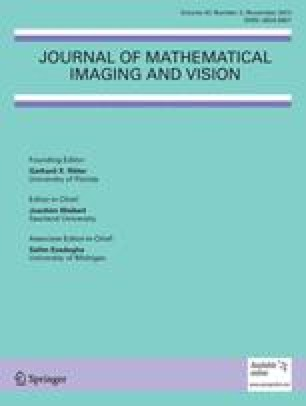 Journal of Mathematical Imaging and Vision