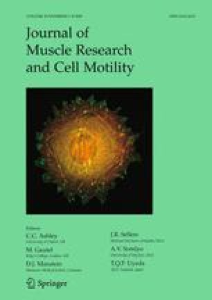 Journal of Muscle Research and Cell Motility - Springer