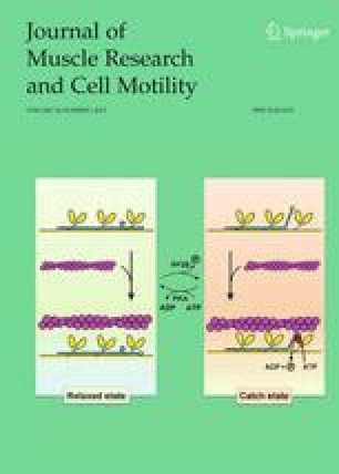 Journal of Muscle Research & Cell Motility