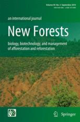 Douglas-fir planted forests | SpringerLink