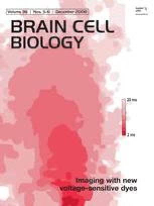Journal of Neurocytology