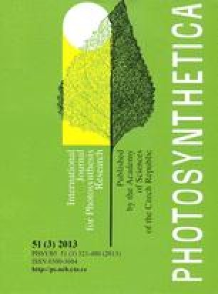 International research on cassava photosynthesis