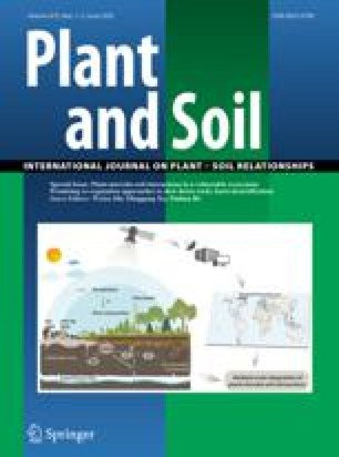 Enrichment of some B-vitamins in plants with application of