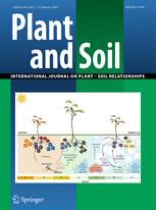 Effect of Streptomyces melanosporofaciens strain EF-76 and of