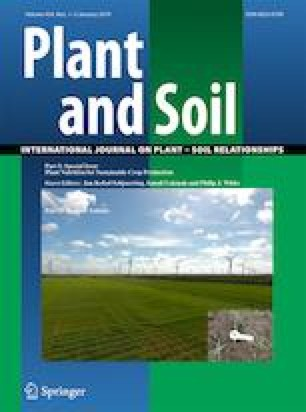Plant nutrition and soil fertility: synergies for acquiring
