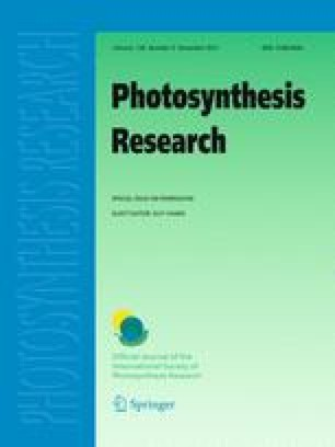 Photosynthesis Research