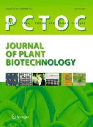 Microspore culture protocol for Indonesian Brassica oleracea  SpringerLink