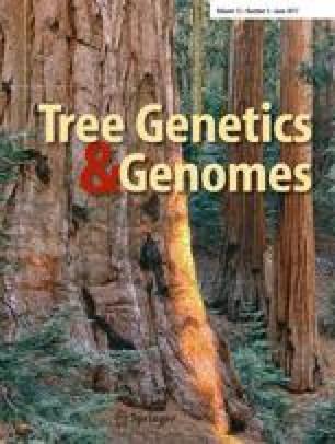 Tree Genetics & Genomes