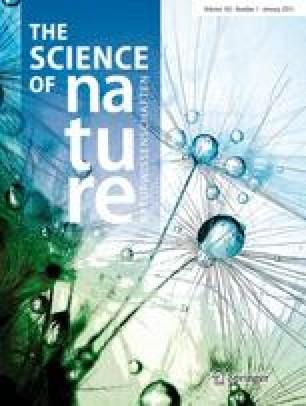 Naturwissenschaften