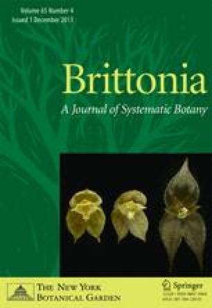 The genus Disciphania (Menispermaceae: Tinosporoideae, Tinosporeae ...