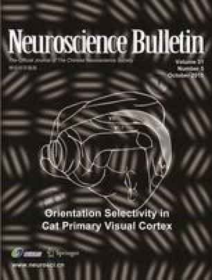 Orientation selectivity in cat primary visual cortex: local