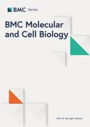 Cell density related gene expression: SV40 large T antigen levels in