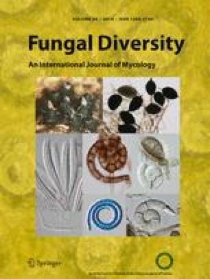 Fungal Diversity