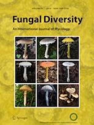 The amazing potential of fungi: 50 ways we can exploit fungi