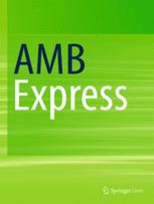 AMB Express