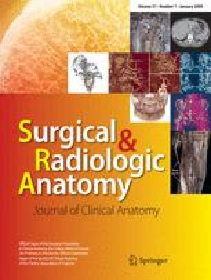 Surgical and radiologic anatomy 2008/2009 | SpringerLink