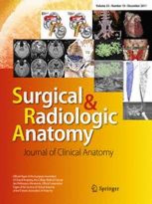 Fasciae anatomy | SpringerLink