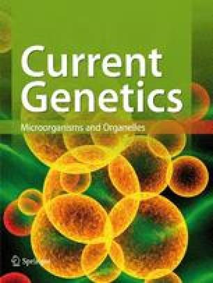 Current Genetics