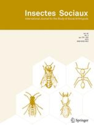Insectes Sociaux