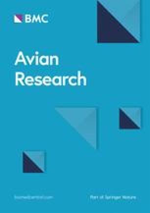 Avian Research