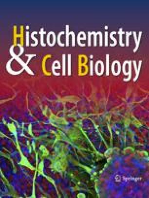Histochemistry