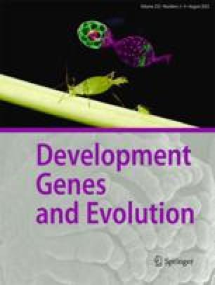 Roux's archives of developmental biology